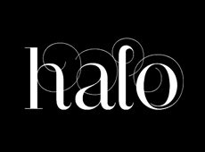 Halo Salon Identity